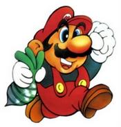 Mario Fusion Dossiers Le Look De Mario