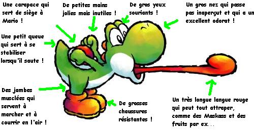 Mario Fusion Dossiers Star Musee Les Capacites De Yoshi